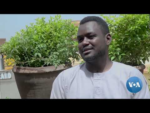Home Gardening is Welcome Distraction During Sudan's COVID Lockdown