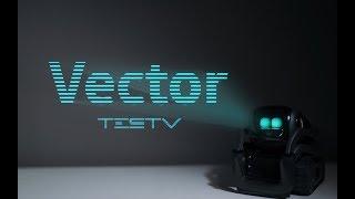 有感情的机器人-vector-值不值得买第310期