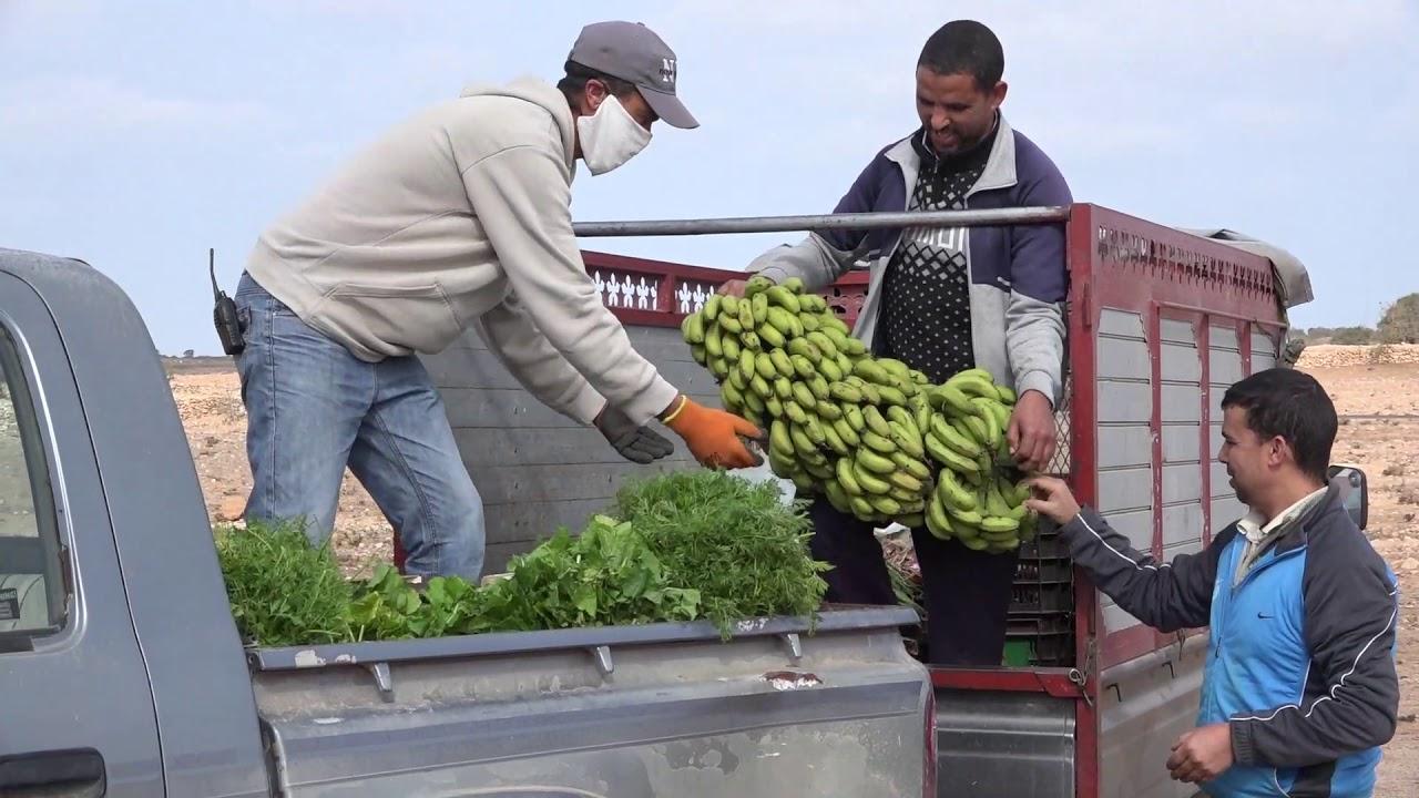 Confinement au Takat - Maroc jour 15