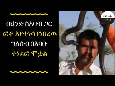 ETHIOPIA -The kiss of death: Man posing for a photo with a deadly cobra in India