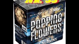 Profi Mix 2 Popping Flowers - Neuheit 2015 (toller Aufstieg, krasses Crackling)