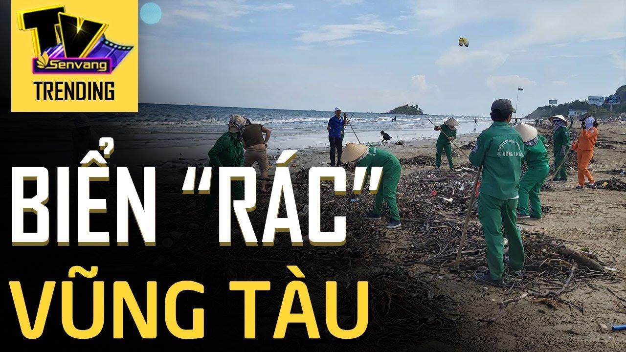 Cận cảnh bãi biển Vũng Tàu bị cả trăm tấn rác vây kín!