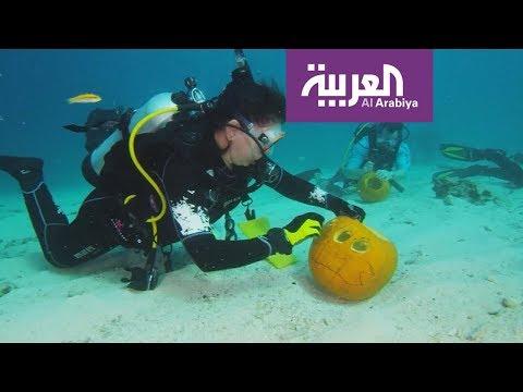 حول العالم #هالوين تحت الماء والسابع في ولاية العرش  - نشر قبل 9 دقيقة