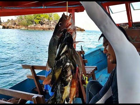 ยิงปลาทะเลอ่าวไทยจากประจวบถึงชุมพร Gulf of Thailand Spearfishing EP.3
