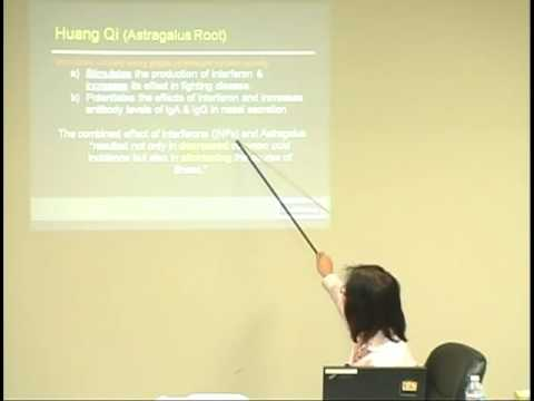 Huang Qi Pharmaceutical Benefits  -- Online Acupuncture CEU