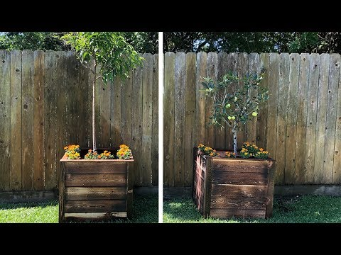 How To Build Cedar Raised Garden Boxes – Easy Beginner Project