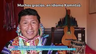 #UnaLeyQueNosConecta: el impulso a los contenidos audiovisuales que preserven la identidad cultural