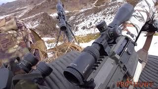 Wolf hunting in Kazakhstan - Загонная охота на волка в Казахстане