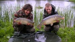 Statisch karper vissen op een parkvijver. Robert Grootenboer