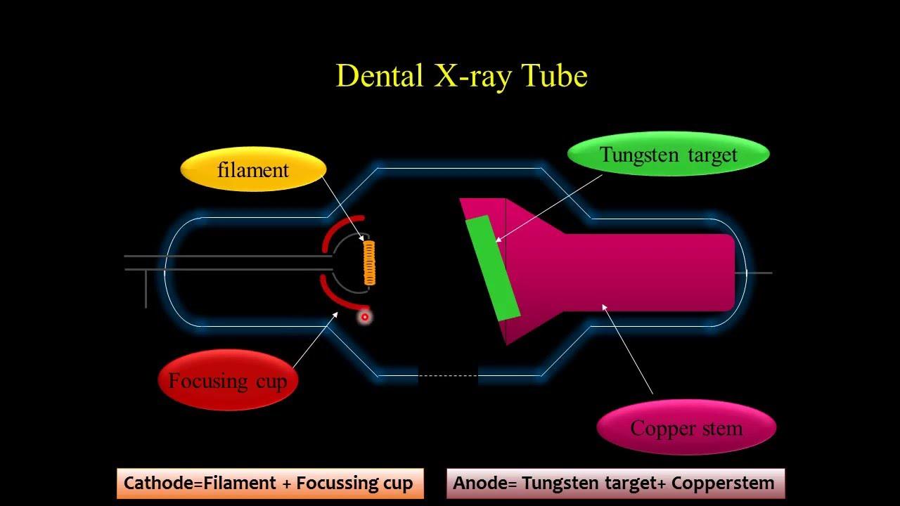 X Ray Tube Head  Its Components  U0026 Functions