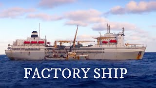 Largest Fish Factory Vessel. Episode 1 | Documentary | Science Channel