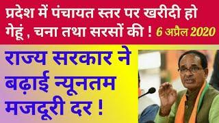 प्रदेश में पंचायत स्तर पर होगी गेहूं , चना तथा सरसों की खरीदी ! सभी क्षेत्रों में बढ़ी मजदूरी दर !