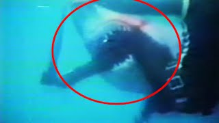 5 Brutal & Horrific Shark Attacks On Humans