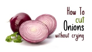 How to cut an Onion Without Crying or tears | Secret Revealed ! Amazing Video
