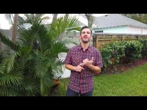 Escondido Christian School - Principal's Message