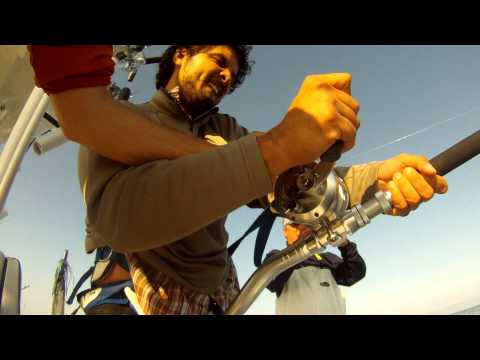 Offshore NY Tuna Fishing with Manhattan Fly