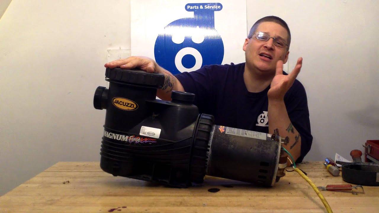 Carvin magnum force pump 1 1/2 hp pump 94027115 inyopools. Com.
