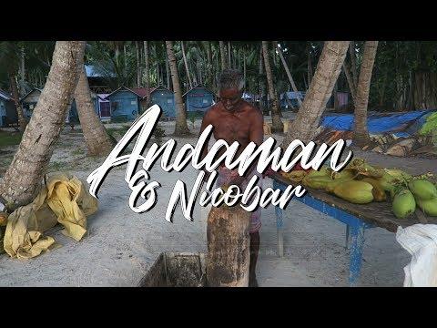 STUNNING HAVELOCK ISLAND (ANDAMAN) - INDIA TRAVEL VLOG #69