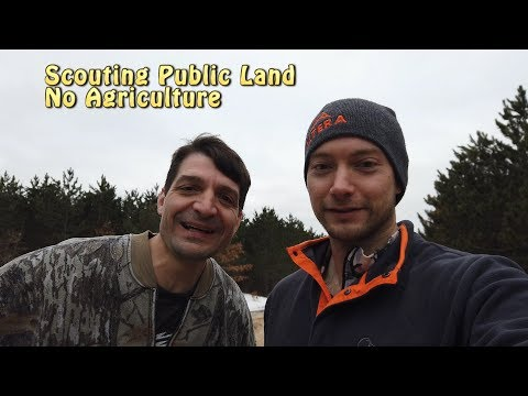 Scouting Public Land For Map Reading Challenge
