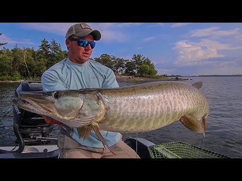 FIRST CAST MUSKY! (Figure 8 Tips) | Canadian Vlogs Day 17|