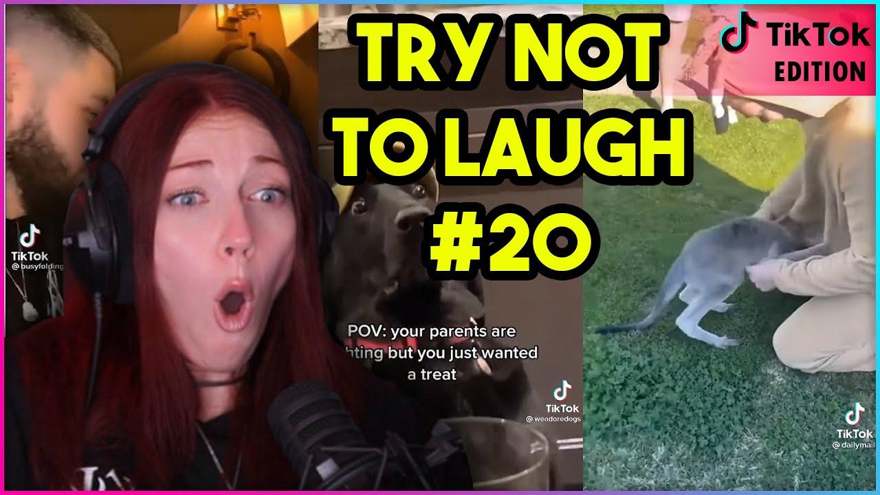 TRY NOT TO LAUGH CHALLENGE 20 TikTok Edition  Kruz Reacts