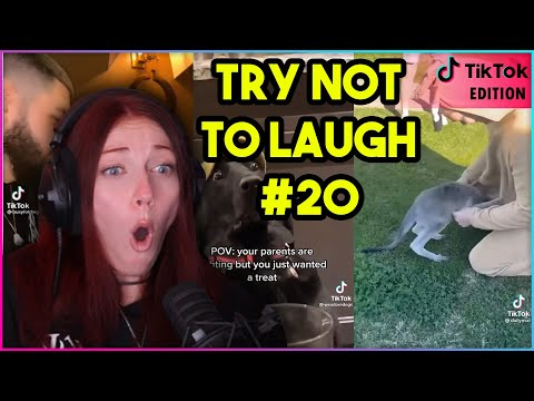 TRY NOT TO LAUGH CHALLENGE #20 (TikTok Edition) | Kruz Reacts
