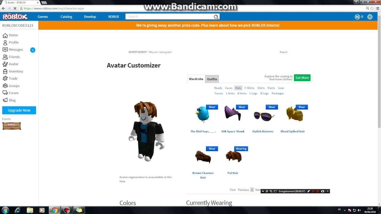 ROBLOX:how to get twitter bird (code) | Doovi
