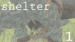 EMERGING FROM THE DEN    SHELTER - Episode #1