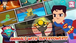 Animals With Superpowers! - The Dr. Binocs Show | Best Learning Videos For Kids | Peekaboo Kidz