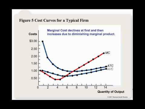 Cost Curves for a Typical Firm
