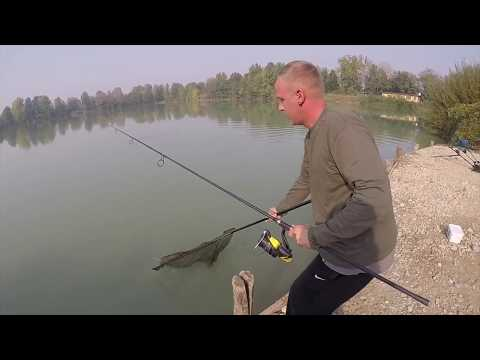 Carpfishing in WildLake Soncino