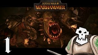 Total War : WARHAMMER - Orcs Campaign! - Let