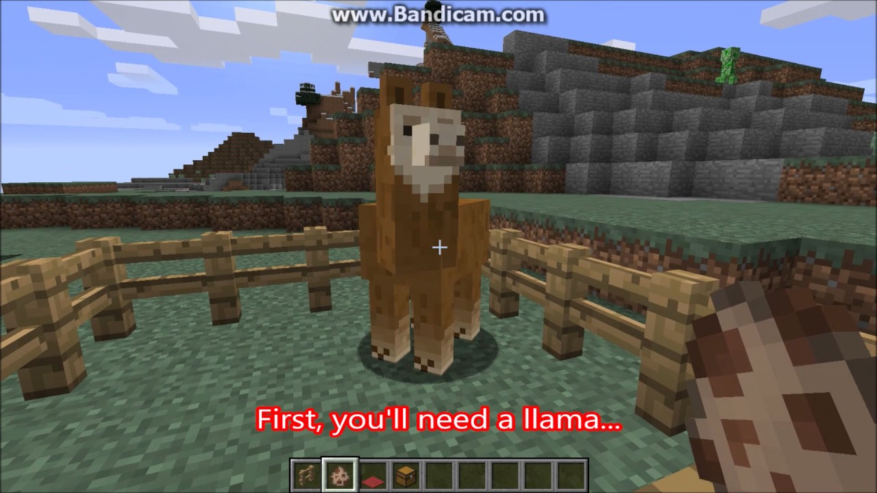 How to tame, decorate, and add a chest to a llama  Minecraft 12.1212 +  tutorial