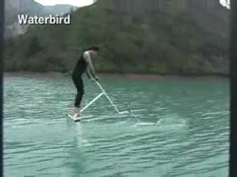 Waterbird Glide on Water No Power No Engine