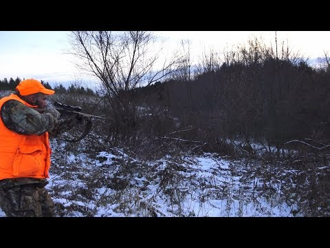 Deer Hunting And Deer Drives Last Day Of Pa Gun Season 2018 - Bucks Misses & Filled Tags