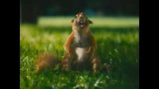 Реклама Сникерса с белками(Реклама Сникерса с белками., 2012-05-22T17:50:58.000Z)