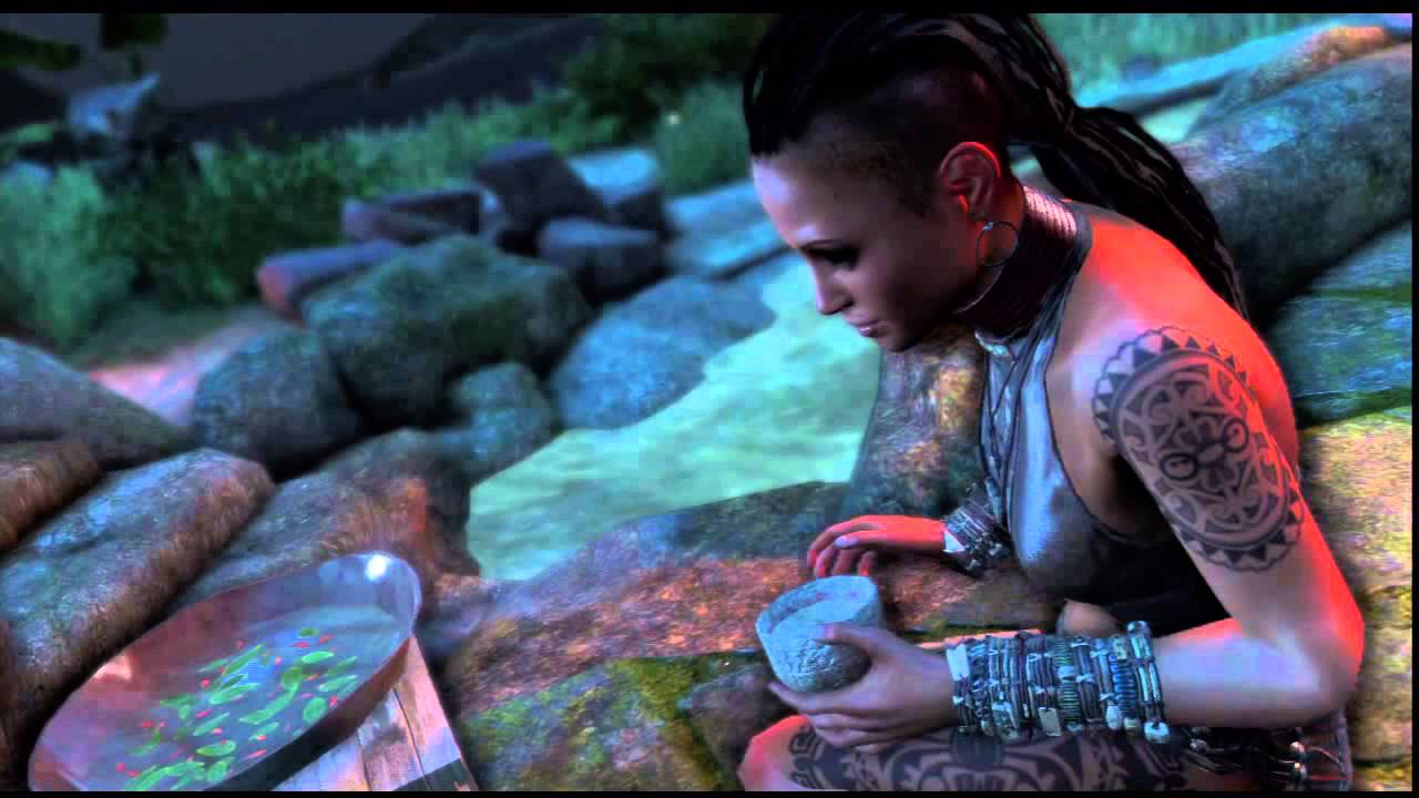 far cry 3 jason and vaas