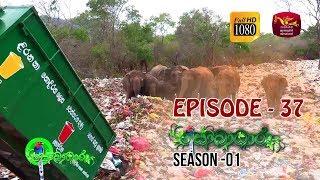 Sobadhara | Season - 01 | Episode 37 | Sobadhara Rupavahini Thumbnail
