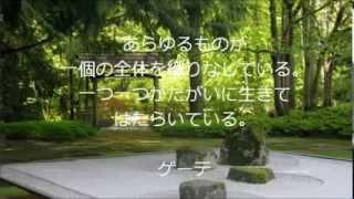 島田雄貴デザイン事務所の「名言・格言」シリーズ。 ゲーテは小説「若き...