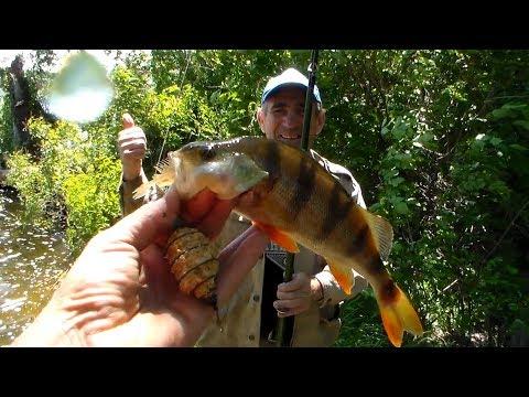 Рыбалка в Нижней Хортице