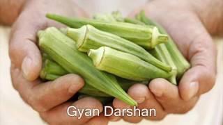 भिन्डी न खाने वाले जरूर देखे ये विडियो - Bhindi or Lady finger kyo hai health ke liye benefit