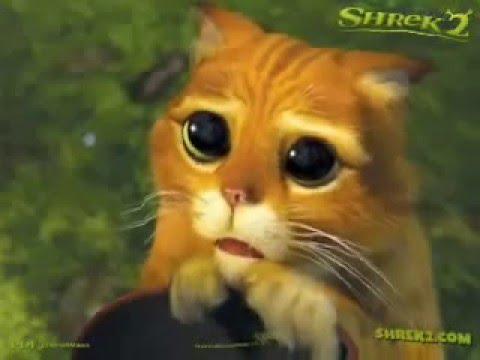 01: O gato cantor gummy bear