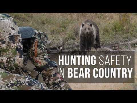 Stay Safe! Hunting in Grizzly Bear Country