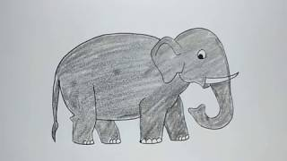 How to Draw Elephant For Kids