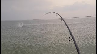 Saltwater Fishing Binge Day 2 and 3 Flounder Bluefish Stripers