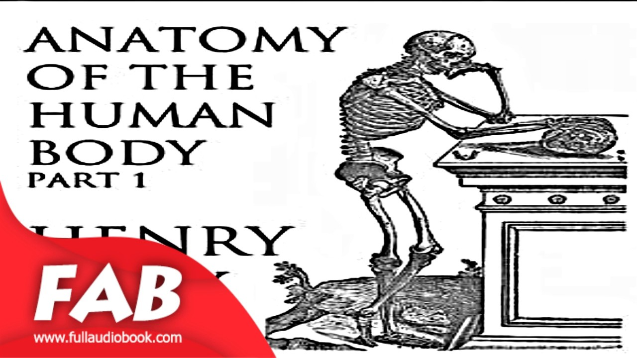 Anatomy of the Human Body, Part 1 Gray\'s Anatomy Part 1/2 Full ...