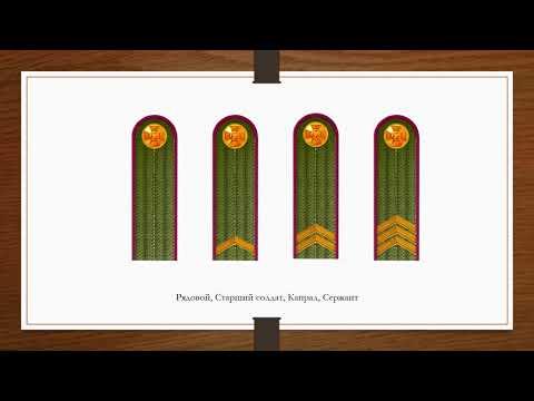 Знаки различия армии Украины (расширенное)