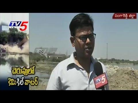 Save Pashamylaram Lake From Chemical Pollution | TV5 Ground Report on Pashamylaram Lake | TV5 News