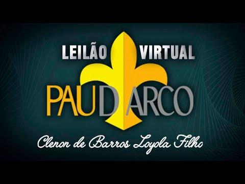 Lote 34   Supremo II FIV da Pau D'Arco   NON 7610 Copy