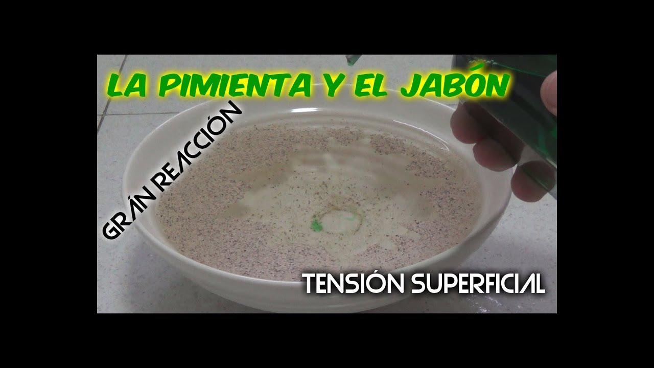 Experimentos caseros la reacci n de la pimienta con el jab n tensi n superficial youtube